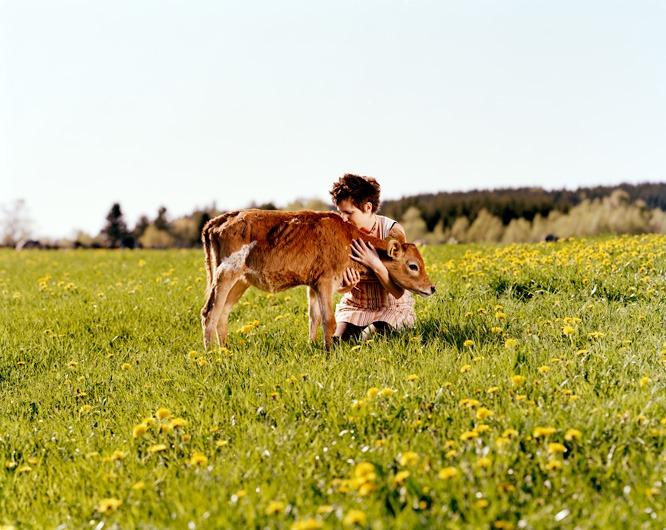 Bildet viser en dame som sitter på åkeren og kysser en kalv i nakken mens hun klemmer den.