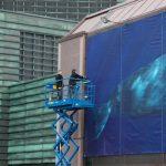 Fotoutstilling mot hvalfangst - verdens største hval på Oslo S!