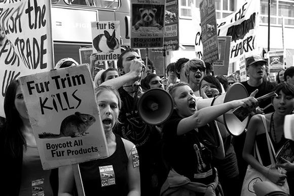 Anti fur rally
