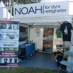 NOAH på HOVE-festivalen