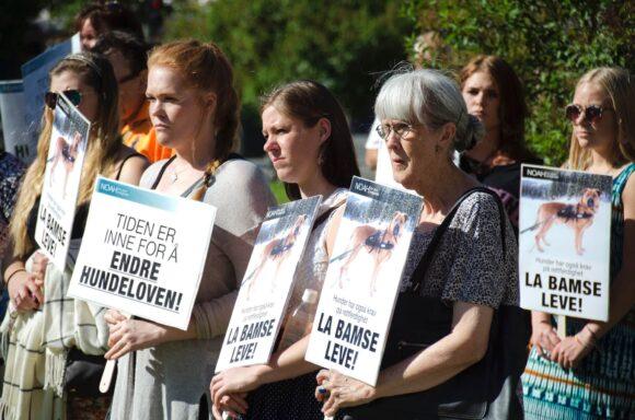 Oppmøtte foran Stortinget krever rettferdighet for Bamse. Alle foto: Øivind Pedersen/NOAH