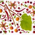 Funky Fresh Foods med vegansk og økologisk kafé på DogA