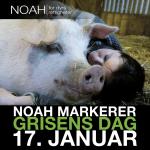 Stavanger: Utdeling av vegetariske smaksprøver i forbindelse med grisens dag.