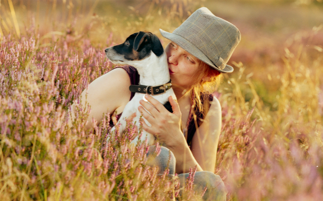 Hund og eier i blomstereng