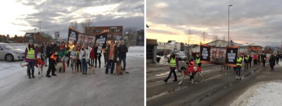 Fakkeltog i Leknes. Foto: Kristin Angelica Frøysa Hansen