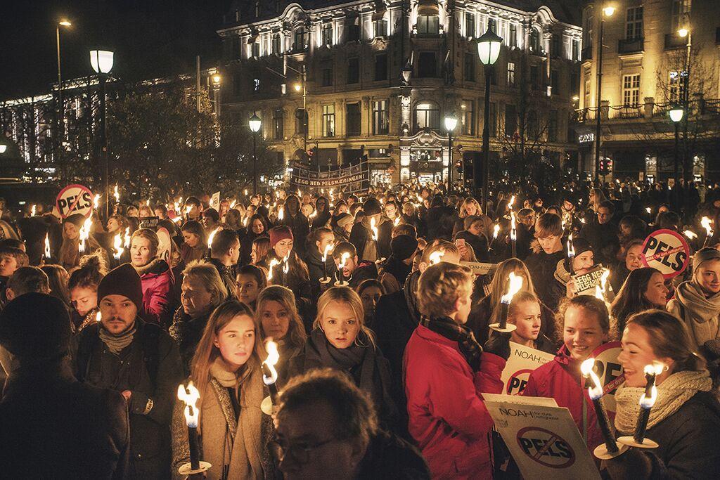 Oslo. Foto: Martine Petra Hoel.
