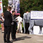 NOAH ber Stortinget gripe inn for sirkuselefantene