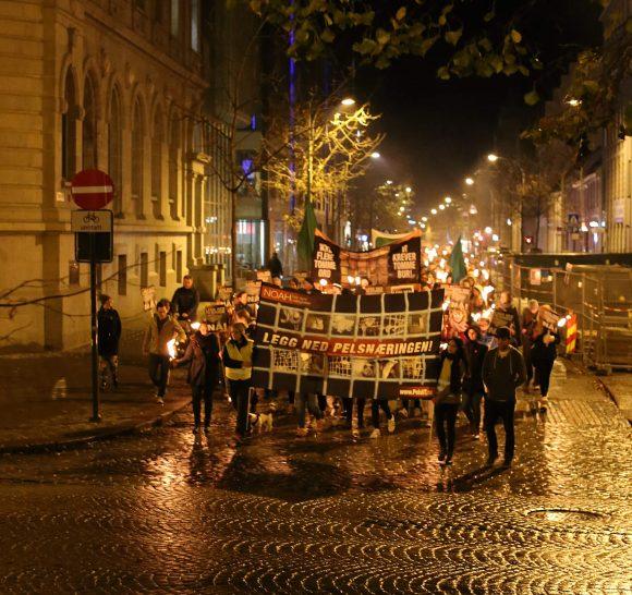 Trondheim. Foto: Eirin Jøssund.