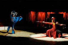 Cirque de Soleil artister på Sirkus Agora. Foto: NOAH