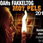 NOAHs Fakkeltog mot Pels 2011