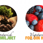 NOAH på Aftenpostens matfestival.