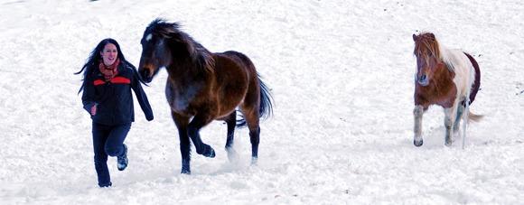 En dame som leker med hestene sine i snøen