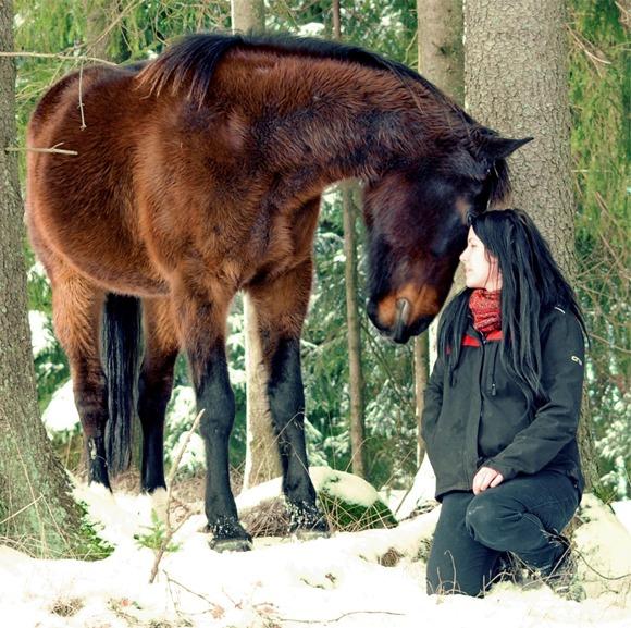 En hest og en dame som ser hverandre inn i øyene og koser