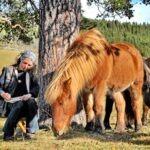 Deler drømmen med hester