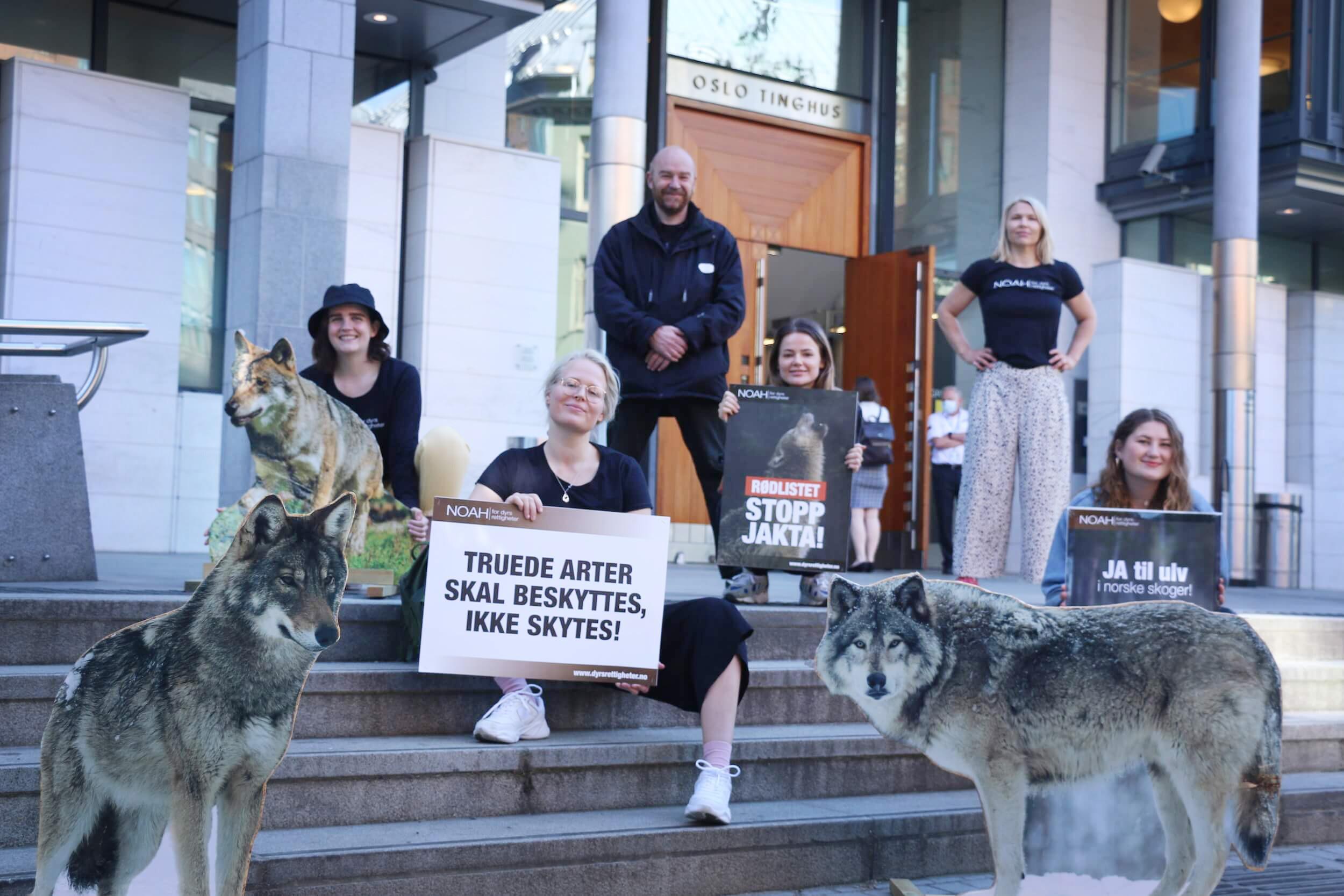 NOAHs markering foran Oslo Tingrett i anledning rettssak for ulvene.