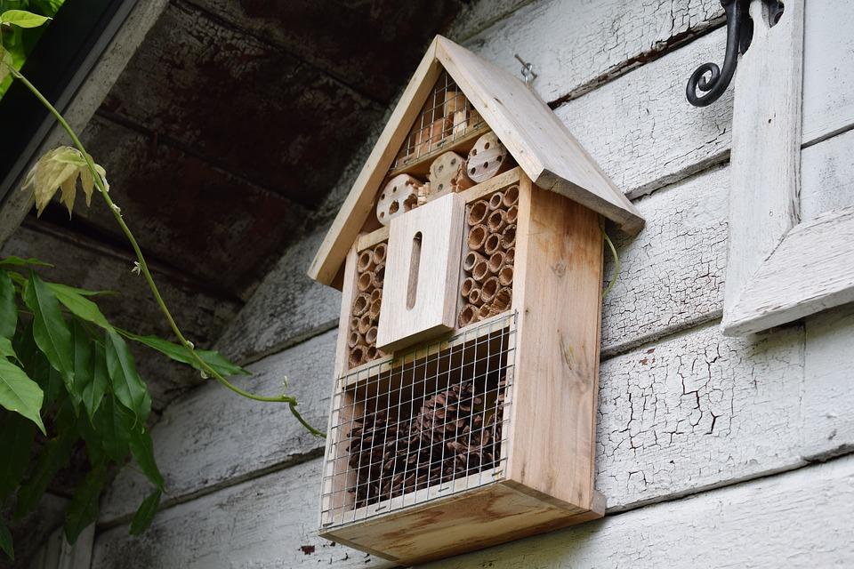 Et snekret biehus som henger på veggen i privat hjem