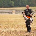NOAH vil ha fokus på treningsmetoder for jakthunder