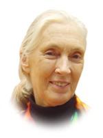 Portrett av Jane Goodall