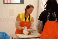 Sissel Rørvik vasker en måke. Foto: NOAH