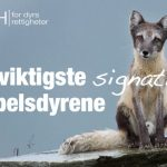 Skriv under for pelsdyrene!