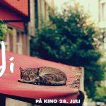 Bli med NOAH på kino i Oslo 25.juli