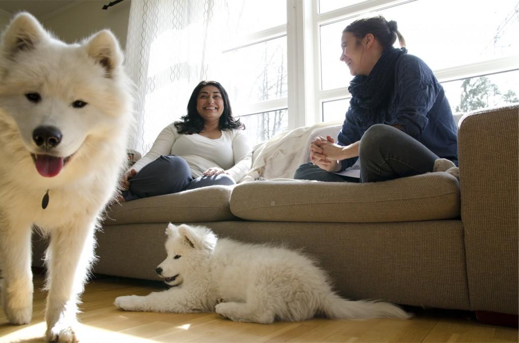 To personer sitter i en sofa og to hunder står ved siden av.