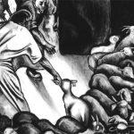 Fatland slakteri i retten for brudd på dyrevernloven
