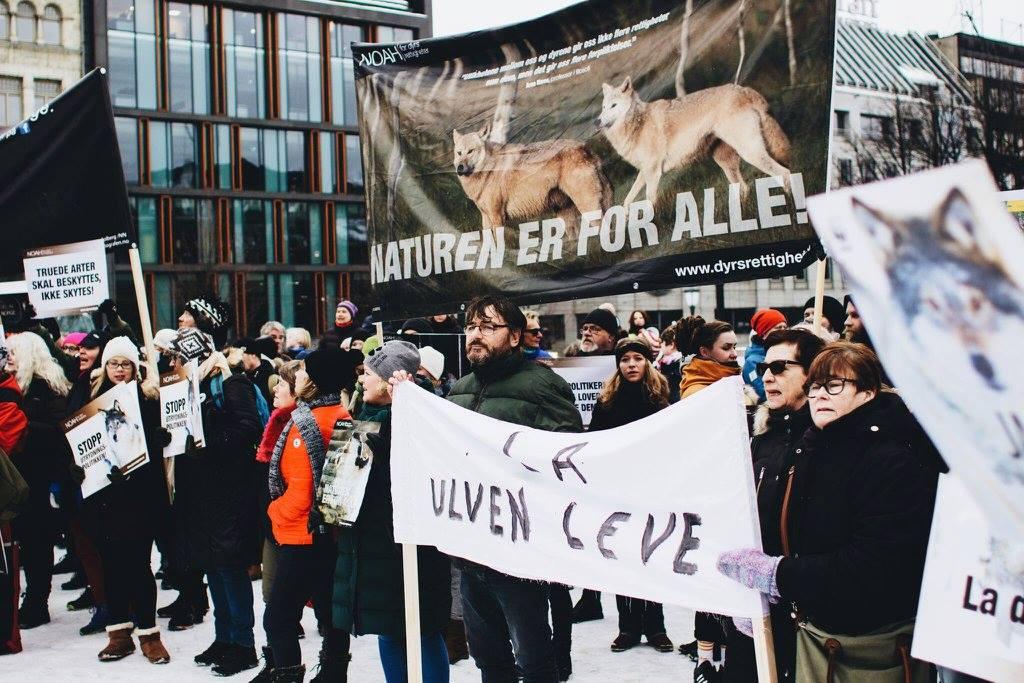 Fra NOAHs ulvemarkering i Oslo