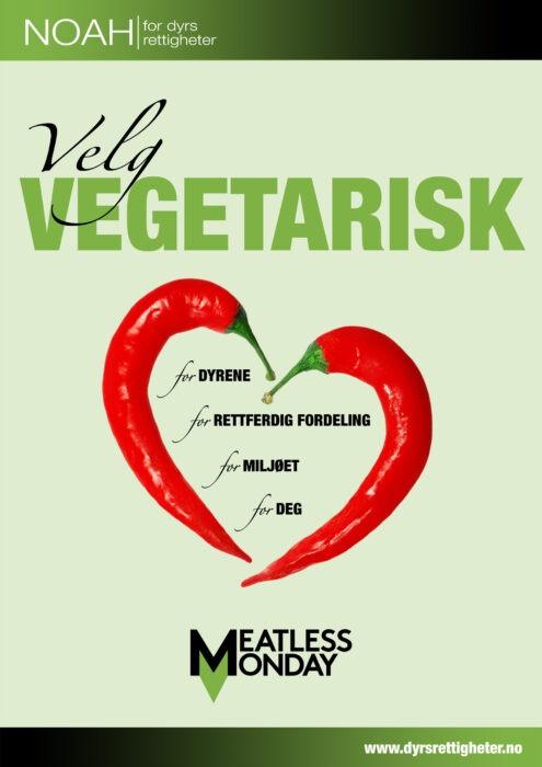 veg.flyer forside
