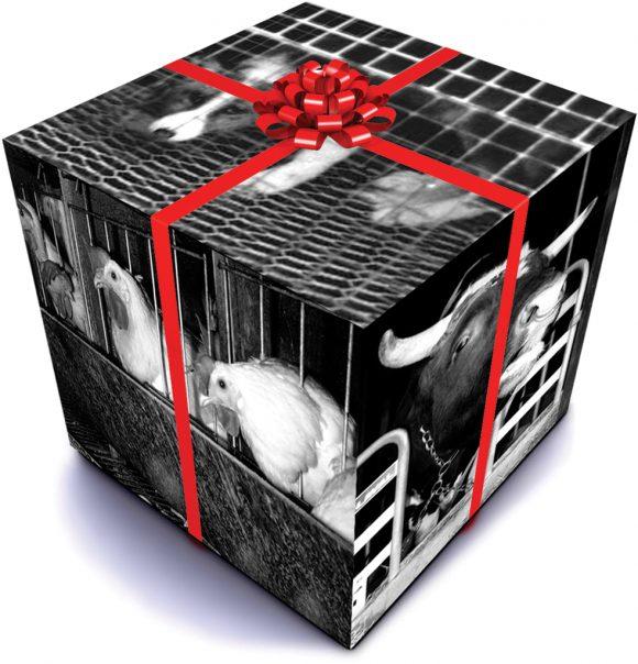 Ny dyrevelferdslov - gave til dyrene?